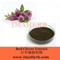 Best Red Clover Extract wholesale