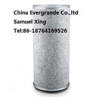 China IVECO ENGINE PARTS Iveco Truck Air Filter OEM 2996157 on sale
