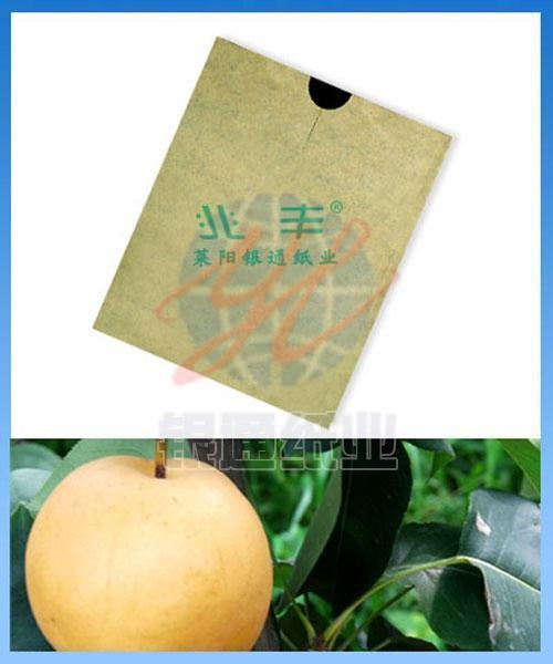 Cheap Pear Growing Paper Bag for sale