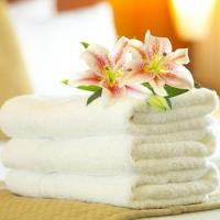 Buy cheap 100% cotton terry towel from wholesalers