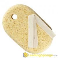 Buy cheap Cellulose Body Sponge from wholesalers