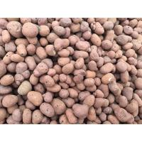 Buy cheap LECA (Lightweight Expanded Clay Aggregate) from wholesalers
