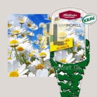 Best Plant Labels plant hang tag plastic flower label for gardening wholesale