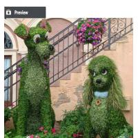 Best Artificial plastic grass animal topiary landscaping ornament wholesale