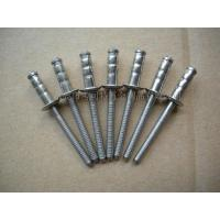 Best Open type core pulling rivets full stainless double drum se wholesale