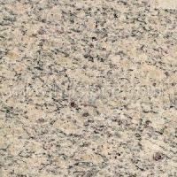 Best Stone Colors Giallo Santa Cecilta Gra wholesale