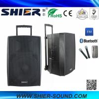Best 15 Inch 65W Class AB AK15-308 Best Trolley Rechargeable USB Speakers For Dancing wholesale