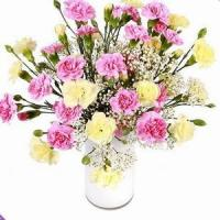 Best Pleasure NO.10 delivery flower to taiwan wholesale