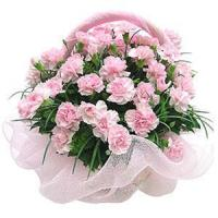 Best Pink Carnations Basket NO.95 delivery flower to taiwan wholesale