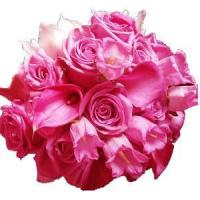 Best Pink Beauty NO.90 delivery flower to taiwan wholesale