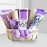 Best Fields of Lavender - Better NO.15 shanghai gift delivery wholesale