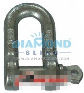 China Drop Forged Dee Shackle Italy Type