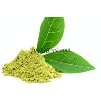 China Green Tea Extract on sale