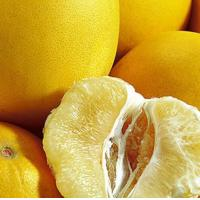 Best Fresh Fruit Sweets Grapefruits for Sale wholesale