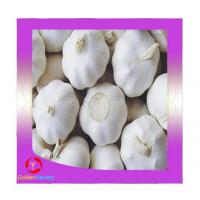 Buy cheap New crops fresh garlic white 4.5cm-6.0cm jingxiang shandong province from wholesalers