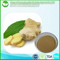 Buy cheap Ginger Extract from wholesalers