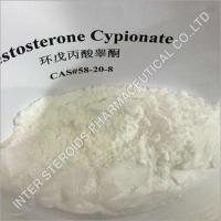 Best Testosterone Cypionate Powder wholesale