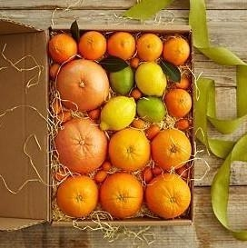 Cheap Simply Fresh Winter Citrus NO.2 shenzhen gift hamper delivery for sale