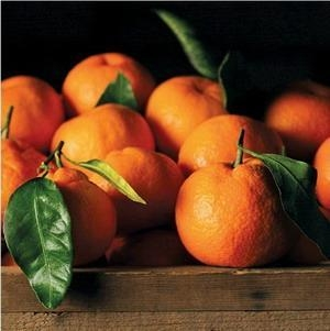 Cheap SATSUMA MANDARINS NO.34 deliver gift hamper to shenzhen for sale