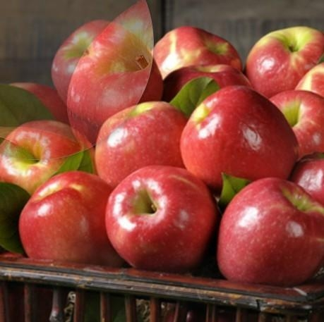 Cheap PINK LADY APPLES NO.30 deliver gift hamper to shenzhen for sale
