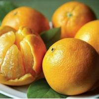 Best CHRISTMAS ORANGES NO.36 deliver gift hamper to shenzhen wholesale