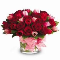 Buy cheap Roses & Tulips NO.78 shenzhen flower delivery from wholesalers