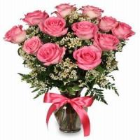 Buy cheap PRIMETIME PINK ROSES NO.71 shenzhen flower delivery from wholesalers