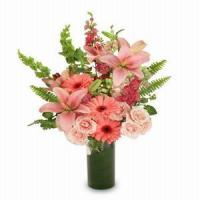 Buy cheap Pink Romance NO.70 shenzhen flower delivery from wholesalers