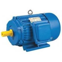 Best Motor Y 3-phase AC MOTOR wholesale
