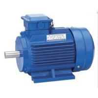 Best Motor Y2 3-phase electric motor wholesale