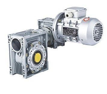China AC Double Worm Gear Motor
