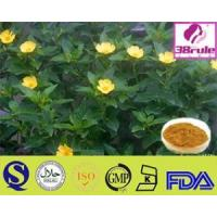 Best World Class Supplier Of Natural Damiana Leaf Extract wholesale