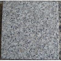 White Granite G602 Slab Stone for Kitchen Sink and Countertop for from Factory Supply