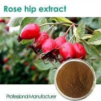 Best High quality Vitamin C 500mg with Rose Hips chewable wholesale