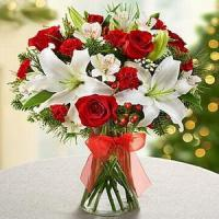 Best Holiday Magic NO.22 delivery flower to china wholesale