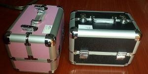 China Popular Aluminum Cosmetic Case With Trays