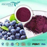Best Bilberry Fruit Extract Powder 25% Anthocyanin Pigment HPLC,UV Supplier Wholesale wholesale