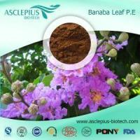 Best Banaba Leaf Extract Powder Supplier Wholesale / the Active Ingrediants Is Corosolic Acid wholesale