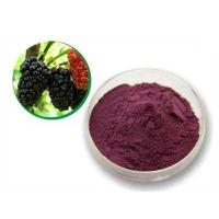 Best Mulberry Leaf P.E mulberry leaf extract mulberry leaf powder wholesale