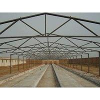 Best Noiseproof Insulation Chicken Shed Framing Systems Light Steel Frame Sandwich Panel wholesale