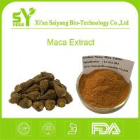 Best Maca Powder/Best Organic Best Black Raw Lepidium Meyenii Root Extract Powder wholesale