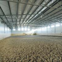 Best Modern Steel Horse Stable Plan Horse Barns for Sale wholesale