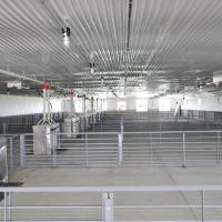 Best Pig and Hog Barns Farming House Construction Steel Buildings wholesale