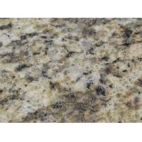 Best Granite Giallo Santa Cecilia wholesale