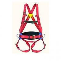 Safety Equitment FALL-ARREST HARNESS JANUS07