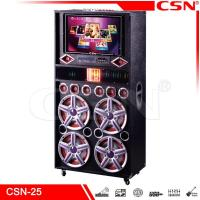Best DJ party big box speaker CSN-25 wholesale