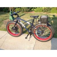 China Entry Level Electric Fat Bike 4.1 on sale