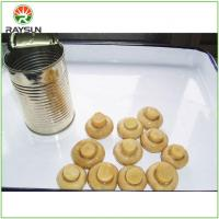 China Canned Fresh White Whole Button Mushroom in Brine on sale