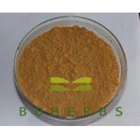Best Eucommiae Cortex Extract Powder Eucommia Bark Extract Tonify Kidney Chlorogenic Acids 25% 98% wholesale
