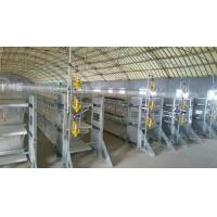 Best XH Broiler cage wholesale